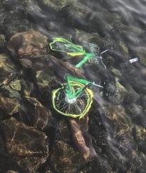 58976829_bikeshare_under_water